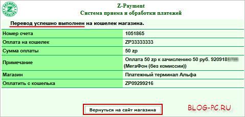 Вернуться на сайт магазина Z-Payment
