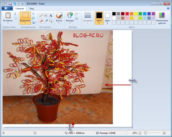 как обрезать фото в Paint
