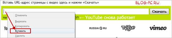Как быстро скачать видео онлайн